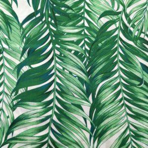 Szczegółowe zdjęcie liści palmy